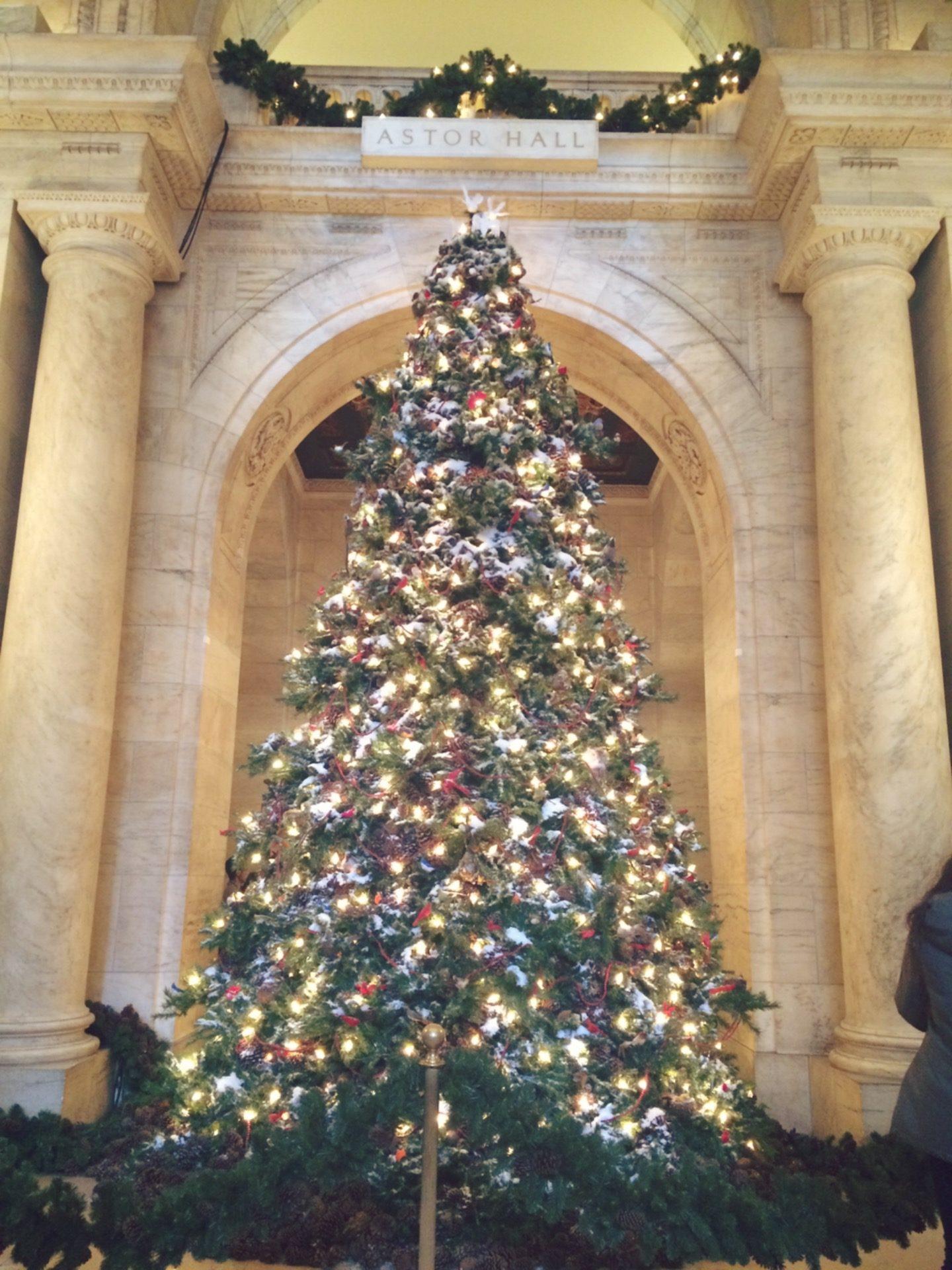 ny-public-library_christmas-season-newyork